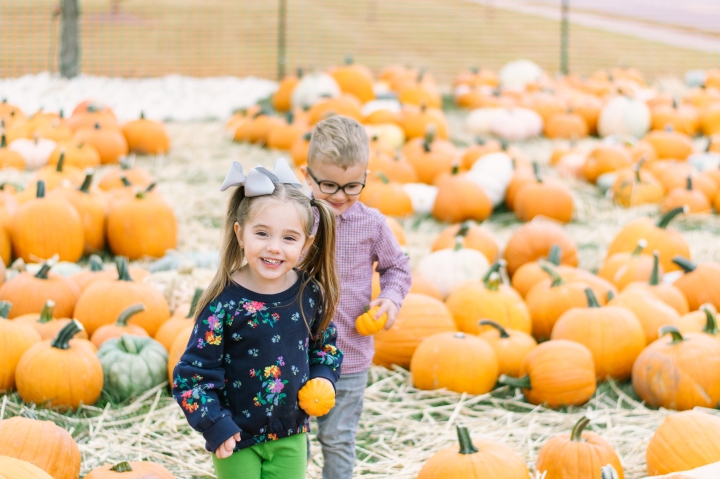 pumpkin-patch-2019-1